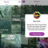 Snapchat Discover Redesign