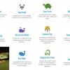 Tehlike Altındaki Emoji'ler